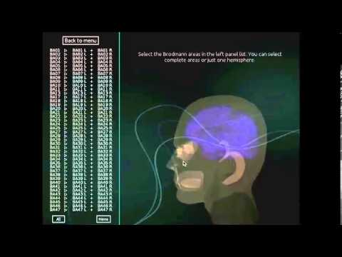 Brain training and the end of the Prozac generation