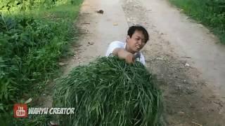 Tahan Tawa 5 menit   Kompilasi Film Pendek WC 2018-2019