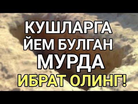 Куз ёшимни тухтатолмадим (таъсирли)