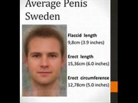 9 inch erection