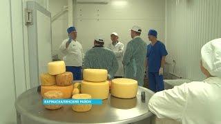 Рустэм Хамитов посетил сыроварню в Кармаскалинском районе где изготавливают итальянские сыры