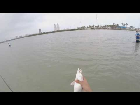 Topwater Fishing In South Padre Island