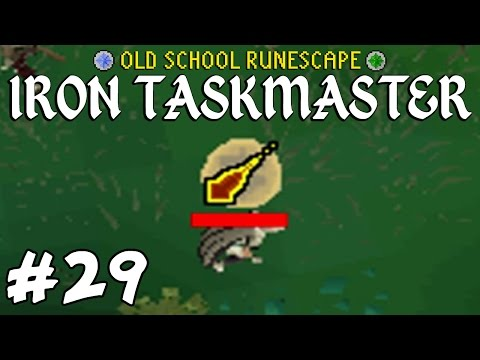 Old School RuneScape Ironman #29 - LET ME COMPLETE MASTER CLUE PLS