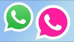 Pink whatsapp   make a own whatsapp and apps