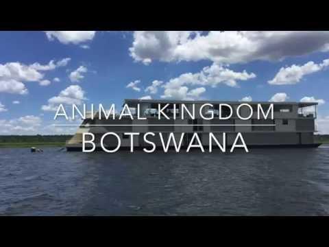 Zambezi Queen Botswana - Elefanten hautnah...