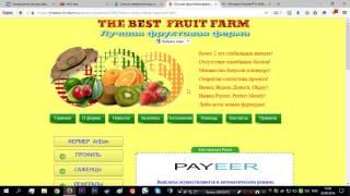 Farm Sosedi Фруктовая ферма и как заработать деньги