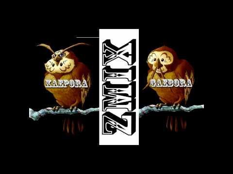ZMiX - Kaepora Gaebora / Owl Theme (Dubstep Remix) *Zelda *