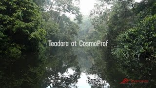 Teadora at CosmoProf 2014