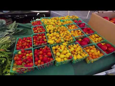 The Organic Rose S2 EP203 Farmer's Market