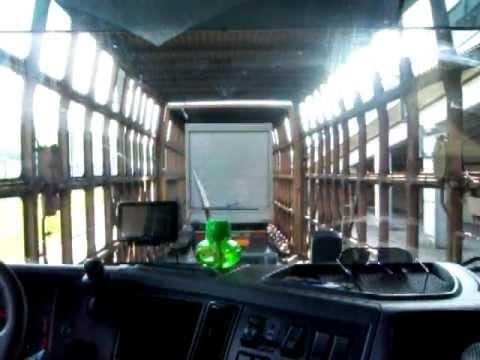Imbarcare tren Eurotunnel Folkestone (GB)  -  Calais (F)