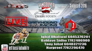 2016 Vancouver Greyhound Races Part 3
