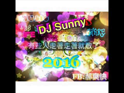 DJ Sunny - 有些人走著走著就散了 2016