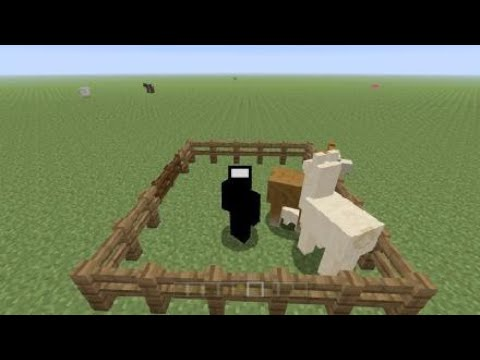 How To Breed Llamas In Minecraft Any Version Youtube