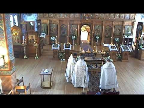 Vigil of Palm Sunday from YouTube · Duration:  1 hour 56 minutes 3 seconds
