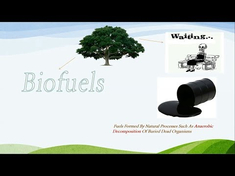 Lecture 1 Energy Cycle And Biofuels