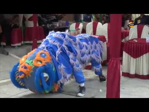 PENGEN DISAYANG  (Atraksi Barongsai) - BUROK DANGDUT BUNGA NADA TERBARU 2019 Live Sitanggal Brebes