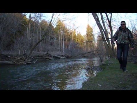 Short Report - Rouge River/Milne Dam (04/15/16)