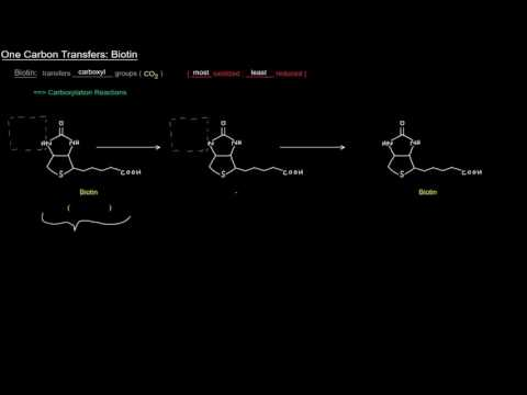 One Carbon Transfers (Part 2 of 5) - Biotin