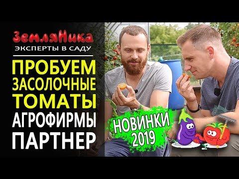 Засолочные томаты от Партнер. Новинки 2019. 0+