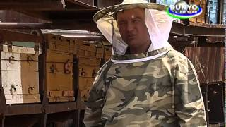 Uzbekistan - Beekeeping story  from GEF SGP supported project (in Russian language)