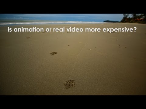 Is Animation or Real Video More Expensive?