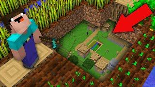 Minecraft NOOB vs PRO: NOOB FOUND SECRET VILLAGE UNDER FARMLAND! Challenge 100% trolling