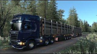스카니아 R580 l 나무 운송 l Driving Sc…