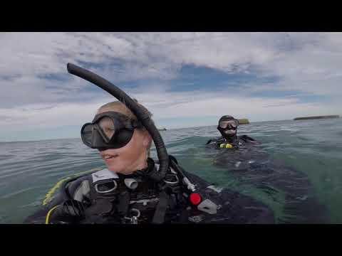 Adelaide Scuba Underwater Easter Egg Hunt 2018