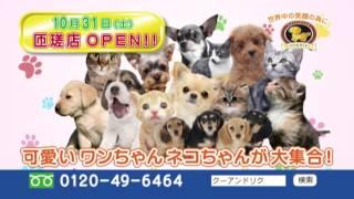 2015/10/31、ペットショップCoo&RIKU匝瑳店がグランドオープン♪ オープ...