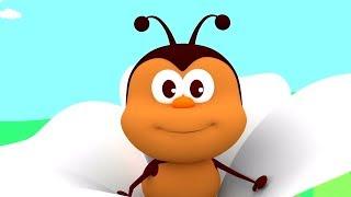Bug Little Bug | Kindergarten Music For Children | Cartoons By Kids Channel