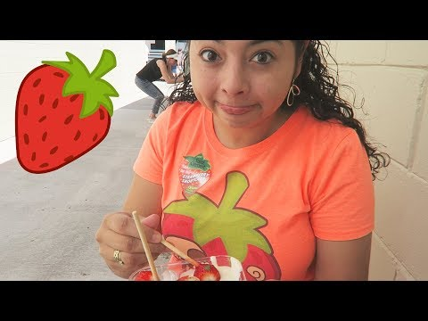 Berry FUN time at the Florida Strawberry Festival 2018!