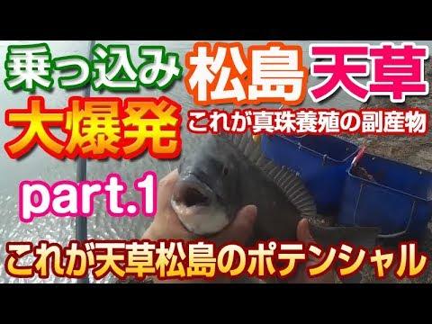 チヌ黒鯛天草 松島で乗っ込み大爆発 全層沈め釣りが釣果安定| Black Snapper Fishing in Japan Kumamoto Amakusa