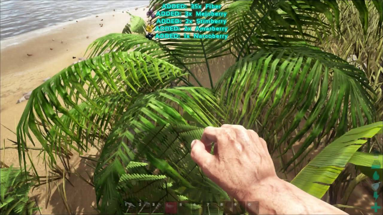 How To Get Fiber Ark Survival Evolved Ps4 Xbox One Youtube