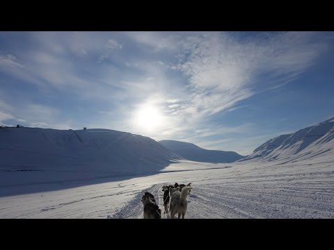 Svalbard vacation 2016