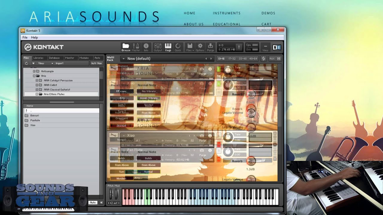Aria Sounds Ethnic Flutes Bundle Demo - SoundsAndGear com