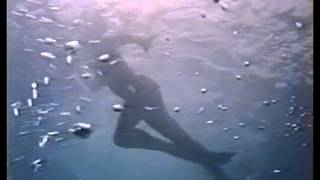 Tintorera (1977) Trailer