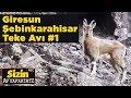 Giresun Teke Avı 1 Sizin Av Safariniz Davut Şimşek Yaban Tv Goat Hunting Turkey