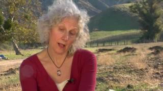 Joan Leegant discusses her novel 'Wherever You Go'