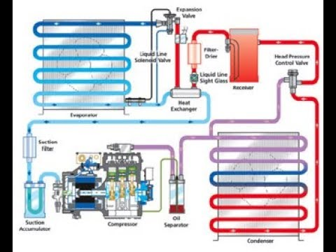 SHIP'S REFRIGERATION FULL WORKING SYSTEM ANIMATED | TEV FUNCTIONING | WORKING OF SENSING BULB