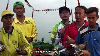 Download Video 5 MERPATI SHOOT TAJAM NGELOS PANJANG ; No 5 PALING GREGET ; On Lapak Padel Tegal MP3 3GP MP4