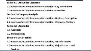 American Security Resources Corporation - Strategic SWOT Analysis Review