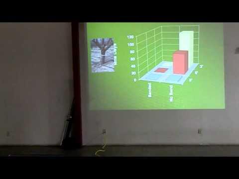 Almond Bloomtime Strategies & Early Season Mite Control-