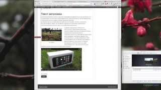 Урок №3. Спринтсайт: особенности редактирования записи в WordPress