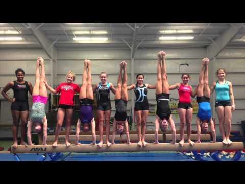 Ocean Flippers Gymnastics Team - Level 10 2014