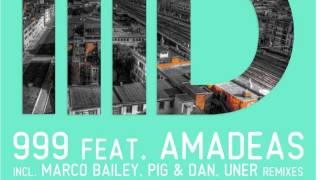 999 feat Amadeas - Find The Answer - Pig & Dan Mix