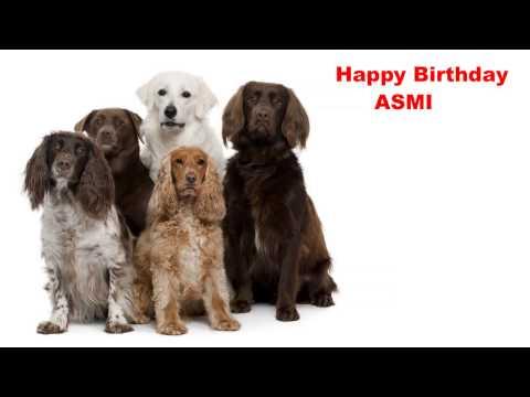 Asmi  Dogs Perros - Happy Birthday