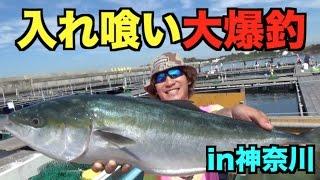 関東で青物が簡単に釣れる釣り堀に行ってきた! thumbnail