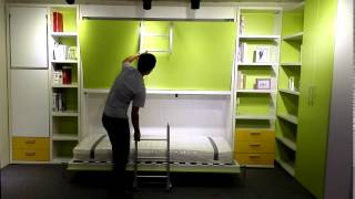 Hidden Bunk Wall Bed Murphy Bed