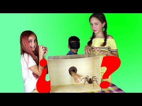 QUE HAY EN LA CAJA Challenge   Whats in the box 😱 - Silvia Sánchez