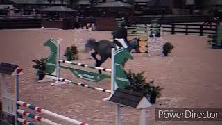 Клип конный спорт (увезите меня на дип-хаус)